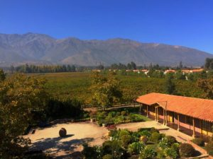 Aquitania Boutique Winery
